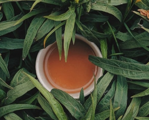 Some fun facts about tea from Cafe Casa.